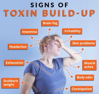 what are toxins in the body)