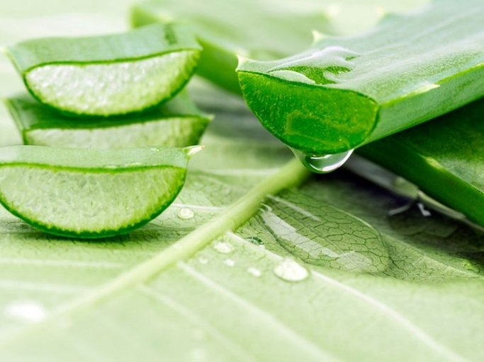 Amazing Aloe Vera Benefits and Uses for Health - healthfoodbeauty